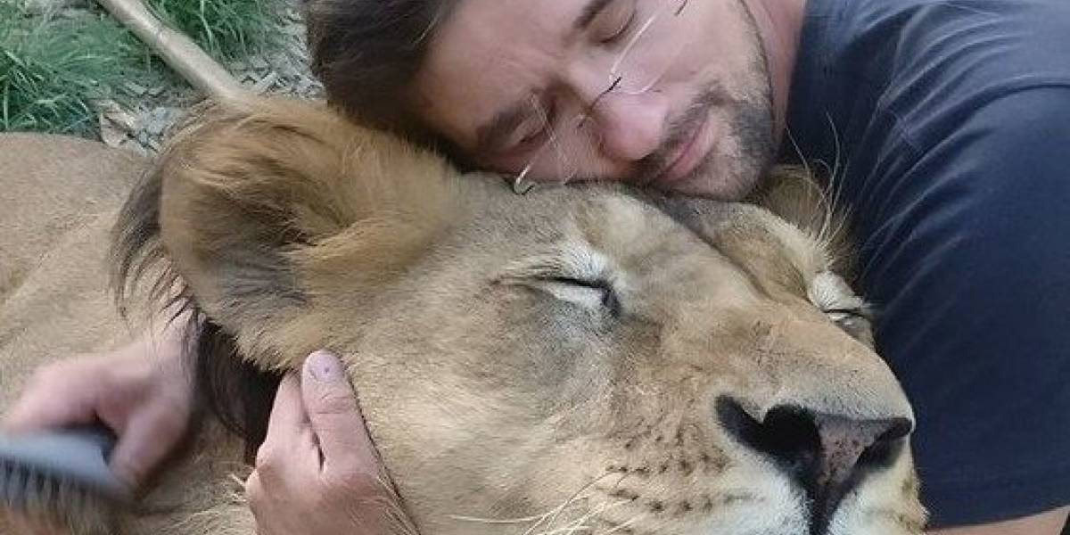 Hombre muere luego que el león que conservaba en su patio trasero lo atacara brutalmente