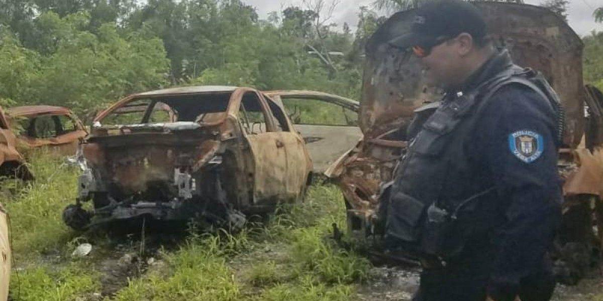 Hallan cementerio de autos robados y quemados en Vega Alta