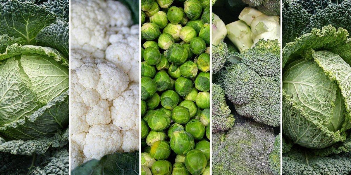 Estes alimentos detox ajudam a limpar o fígado e combatem a ressaca de carnaval