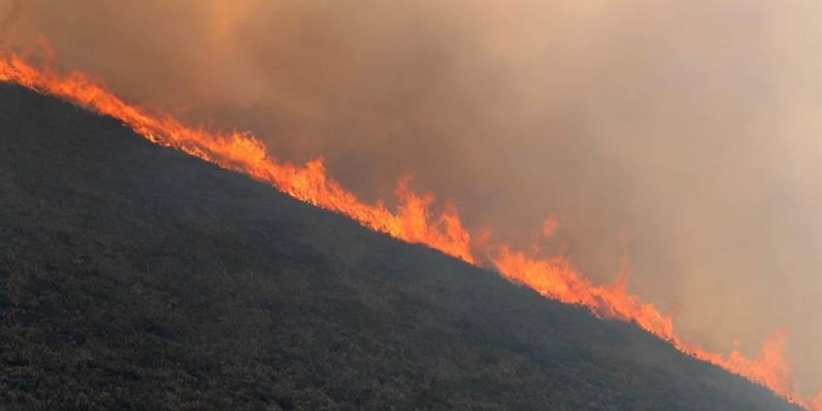 República Dominicana busca prevenir incendios forestales en medio de sequía
