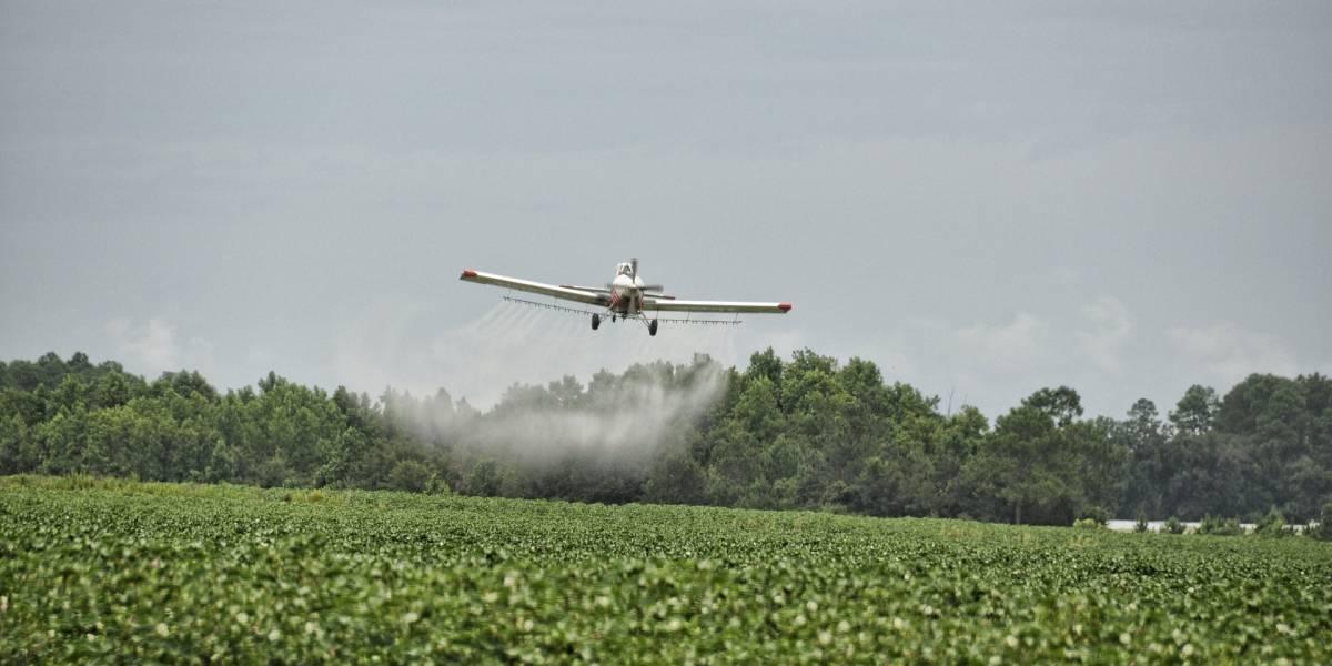 ¿Vuelve el glifosato a Colombia? Inicia el debate para decidir si se retoman las fumigaciones sobre cultivos ilícitos