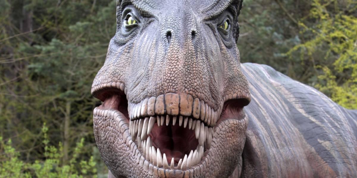 """Toda una ternurita"": recrean como habría sido un Tiranosaurio Rex bebé"