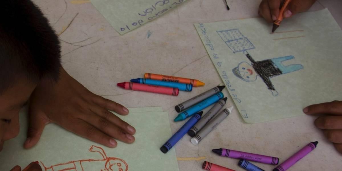 Niños, mujeres y LGBT+, los afectados por el recorte a OSC