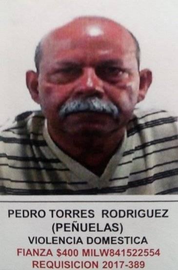 Pedro Torres Rodríguez