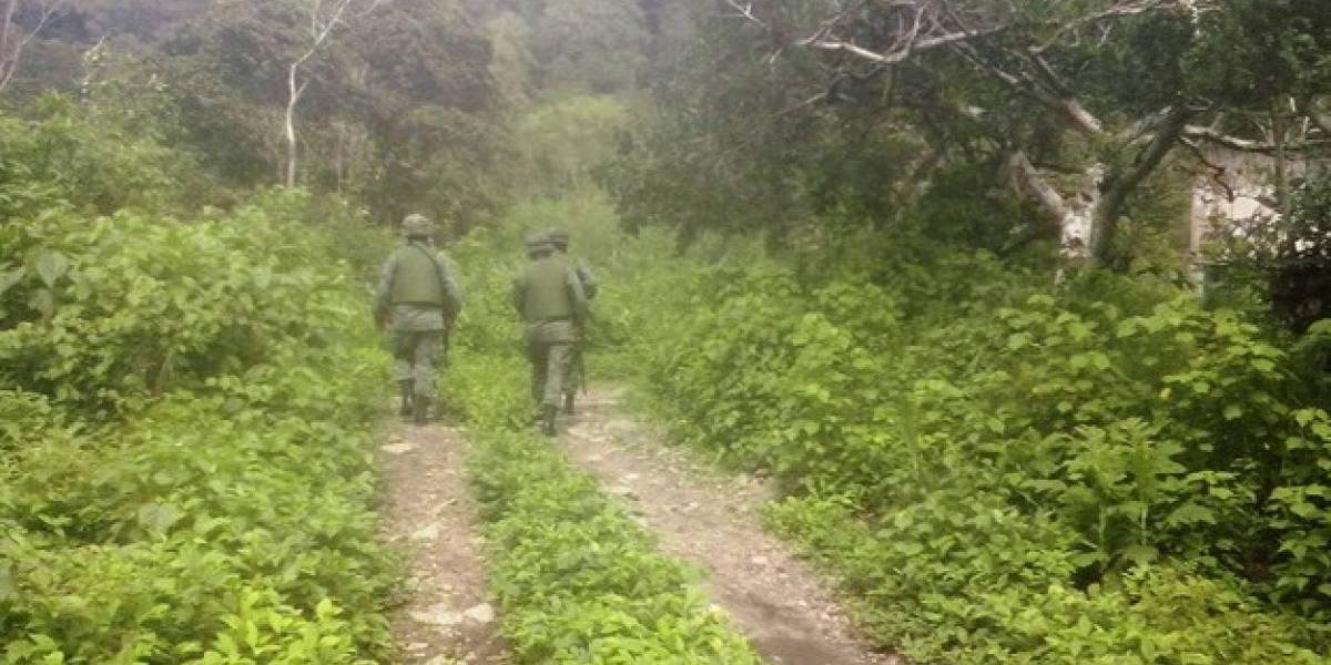 Fuerzas Armadas localizan probable base clandestina en frontera norte