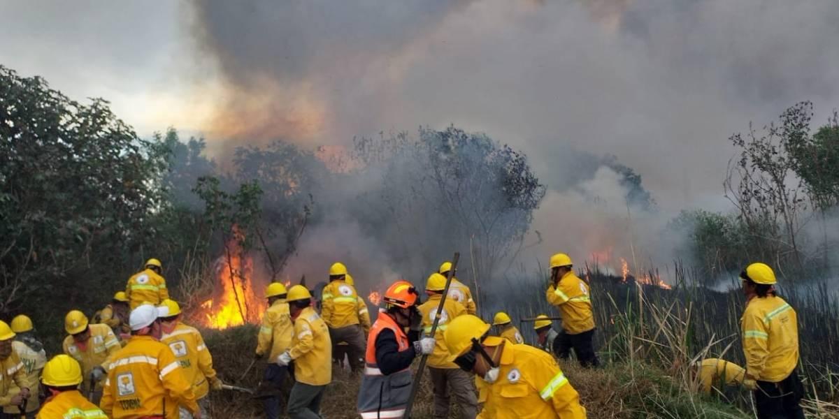 Bajan 40% los incendios forestales en la capital del país
