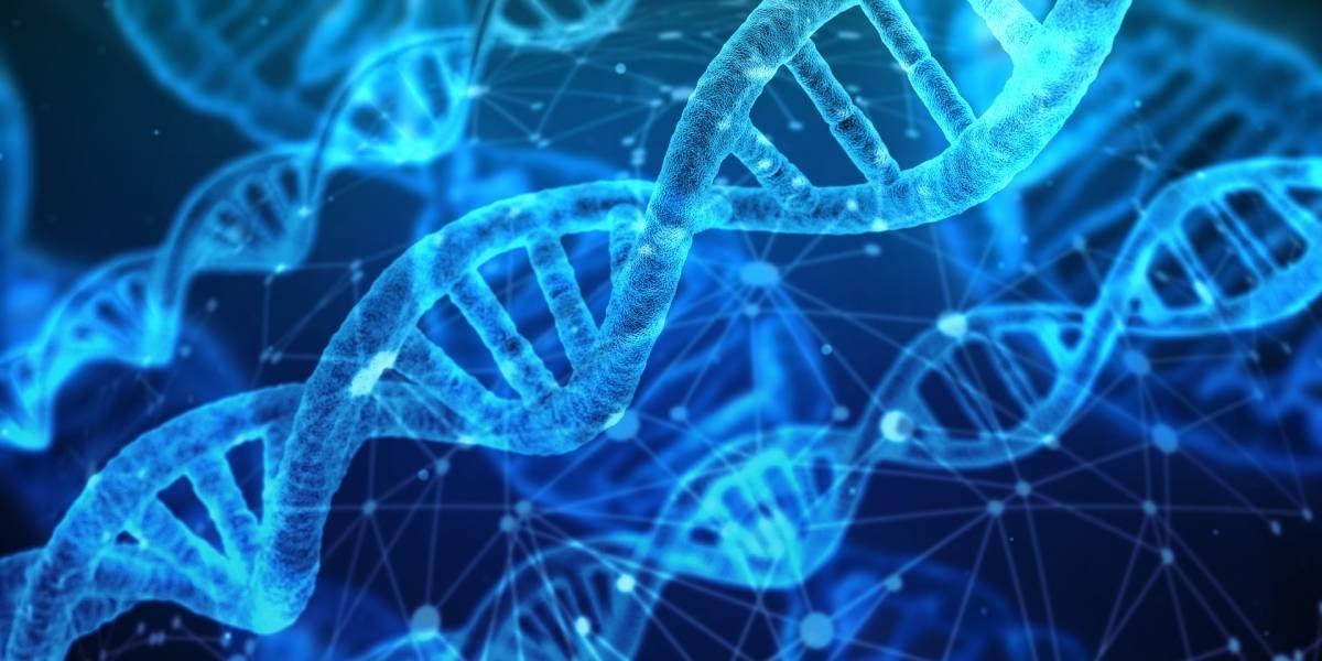 Los datos ahora se podrán almacenar dentro de las moléculas que impulsan el metabolismo