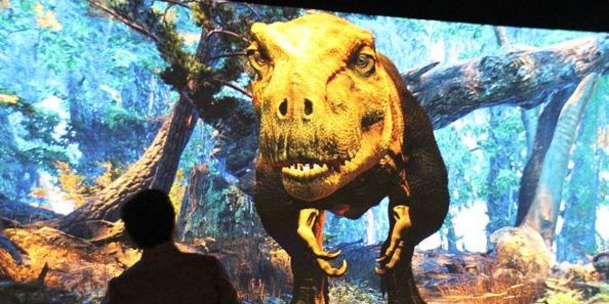 Tierno, mortal y peludo: así lucía el Tiranosaurio Rex bebé