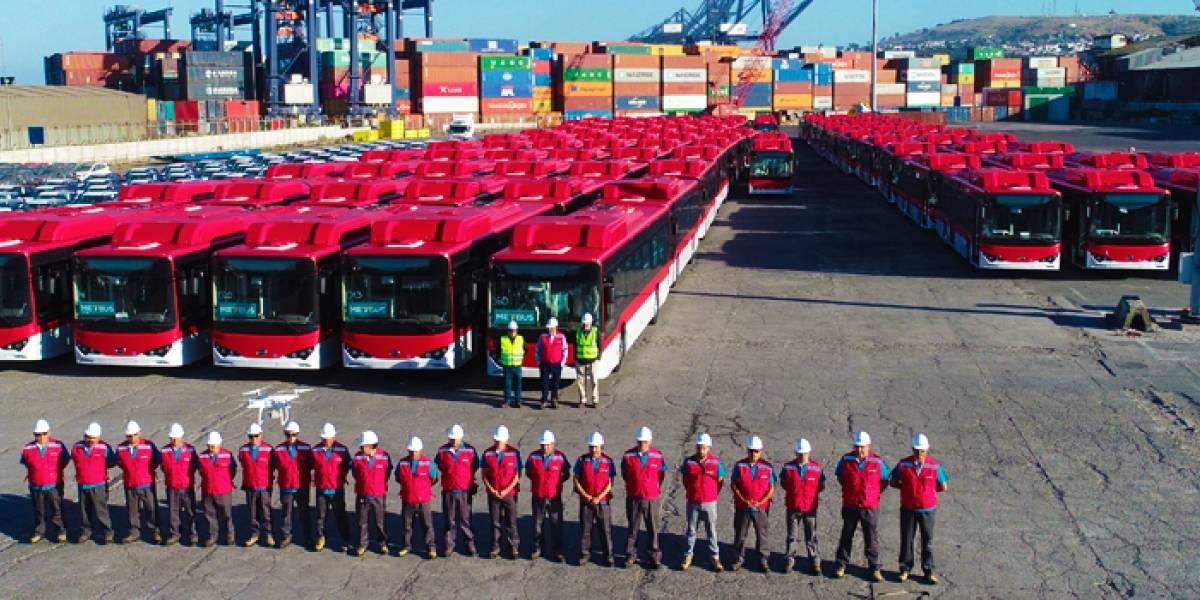 Dale dale RED: Así es el nuevo sistema de transporte que reemplaza al Transantiago