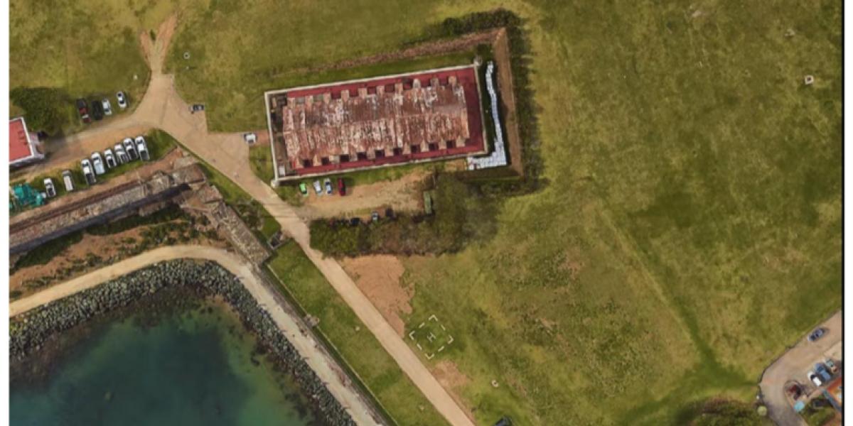 Cortarán árboles de uva playera para estabilización Muro Histórico en El Morro