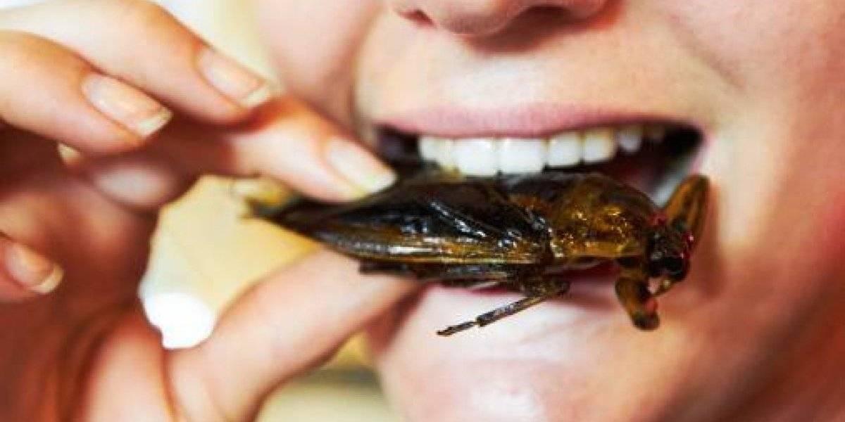 Tras pedir un domicilio mujer descubrió 40 cucarachas en su comida