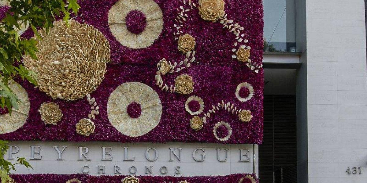 Polanco se llenará de colores con el Festival Flores y Jardines
