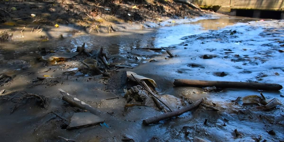 La Sierra Nevada arde por el fenómeno de El Niño y la falta de lluvias