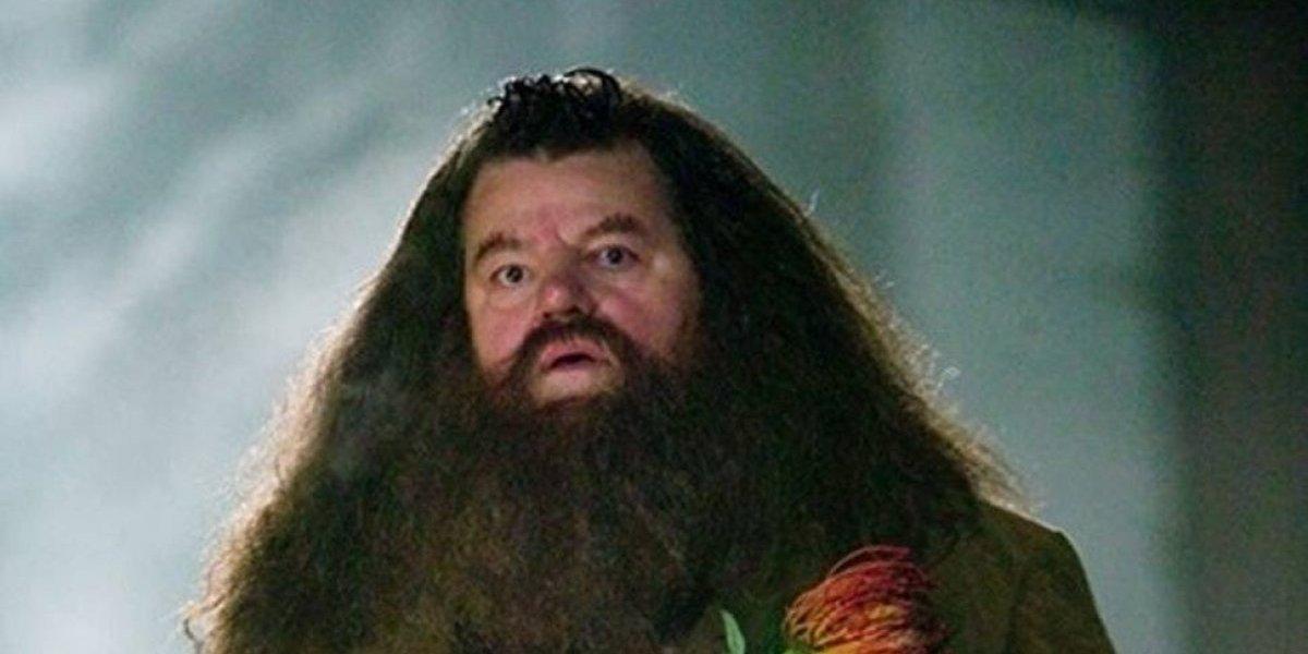 """""""Hagrid"""" de Harry Potter pierde la batalla contra dolorosa enfermedad de los huesos"""