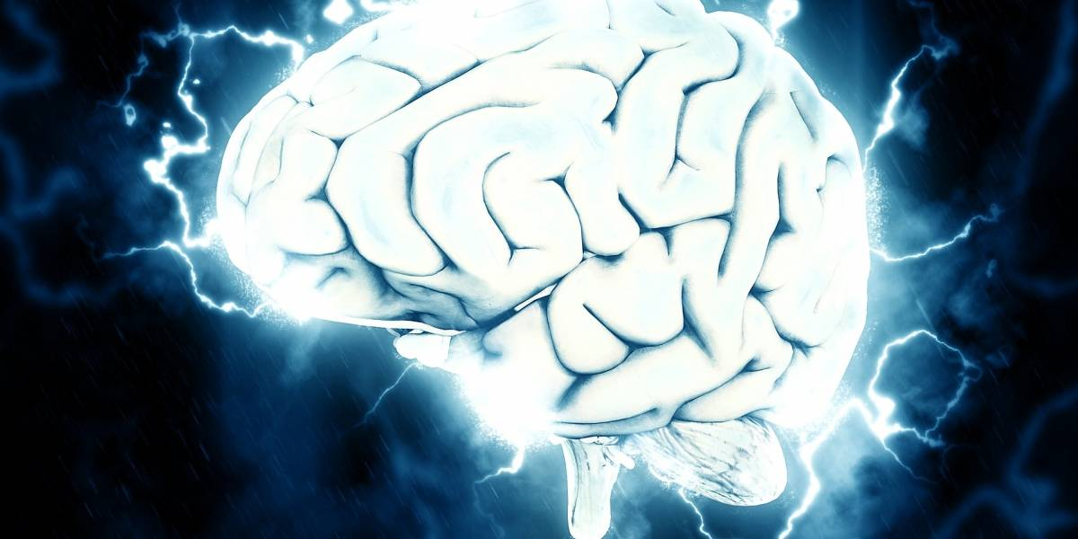 """Increíble: Científicos lograron hacer crecer un """"mini cerebro"""" capaz de contraer músculos"""