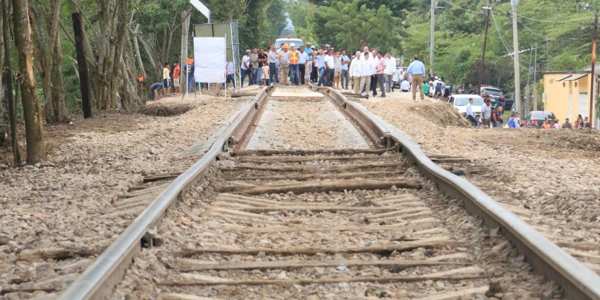 INAI solicita a la SCT difundir costos y beneficios del Tren Maya