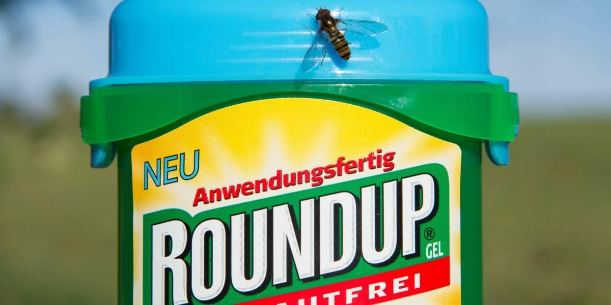 Justicia estadounidense determinó que un herbicida de la marca Monsanto produce cáncer