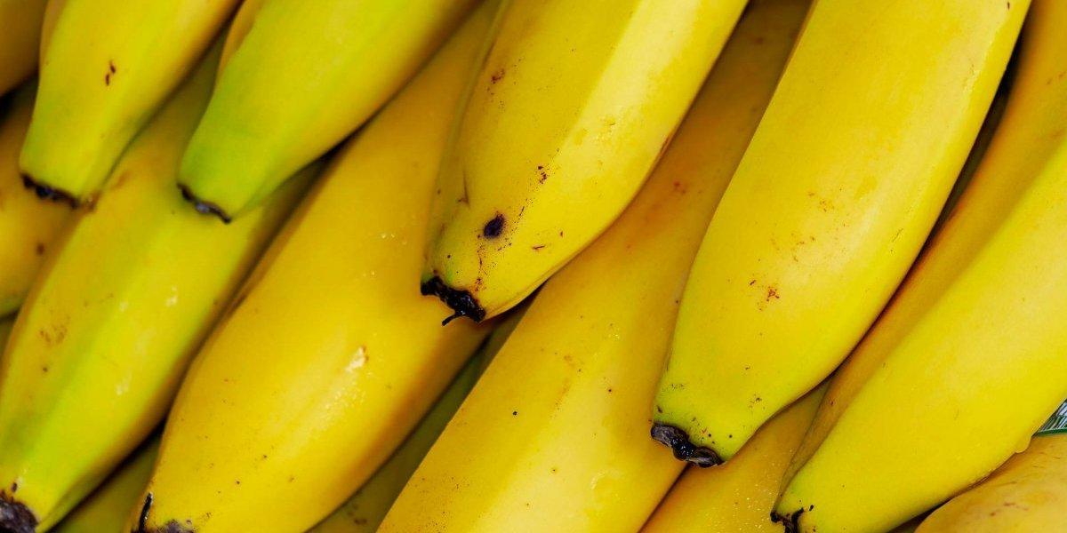 Vitamina de banana e gengibre para emagrecer; confira a receita que tem poder anti-inflamatório