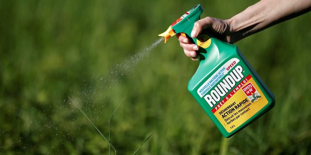 Dictaminan que un herbicida con glifosato le causó cáncer a una persona