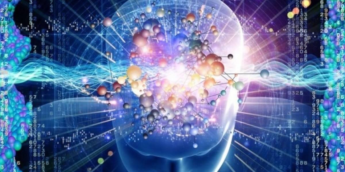 Confirmado: Los seres humanos sí somos capaces de detectar cambios en el campo magnético