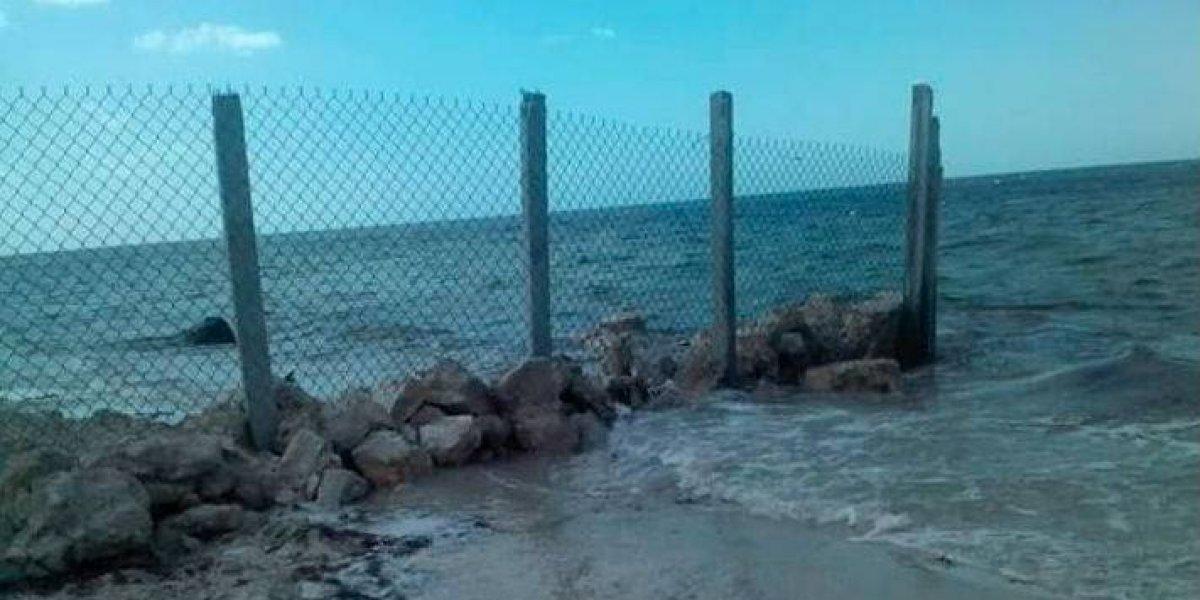 """Pareja estadounidense levanta """"muro"""" en playa de Yucatán; la Profepa lo derriba"""