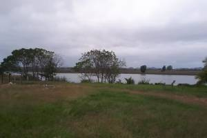 Fincas de Petén, vinculadas a Alejandro Sinibaldi, están en proceso de extinción