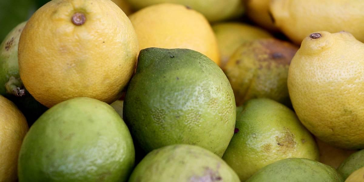 """""""No hay limones"""": la dura advertencia que tiene en alerta a ciudad chilena y que llevaría el kilo a los $3 mil"""