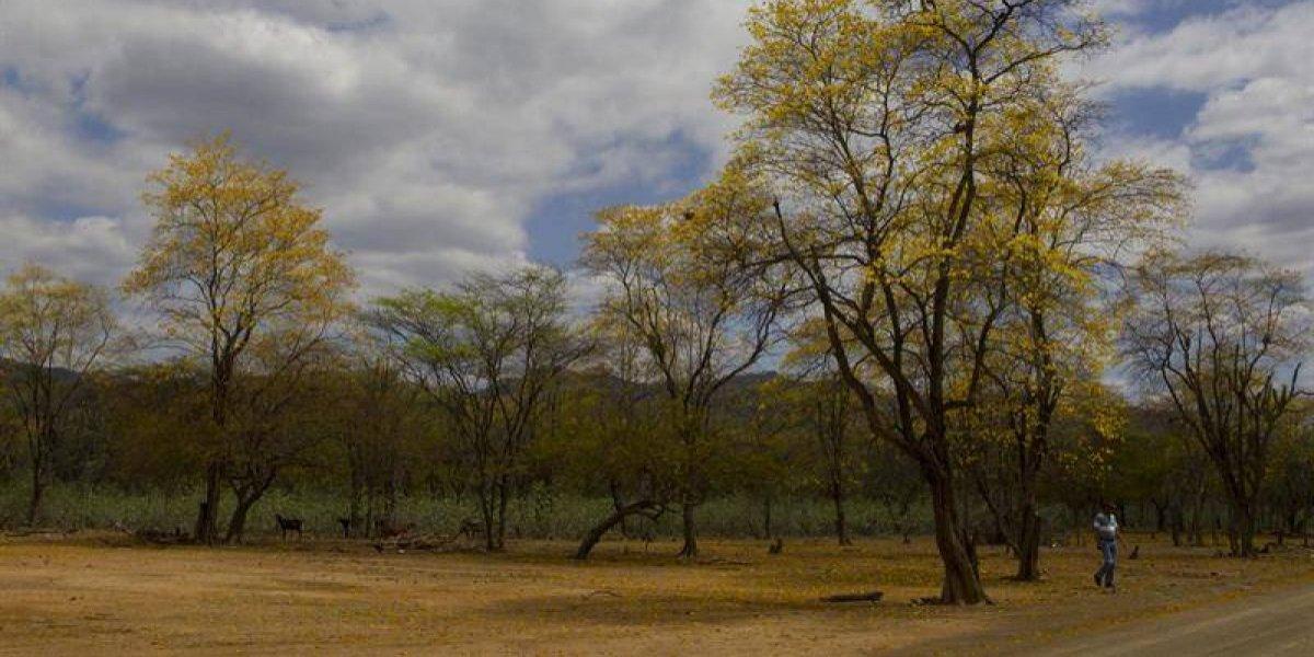 República Dominicana prevé que sequía ceda en mayo pero las activistas ven mal de fondo