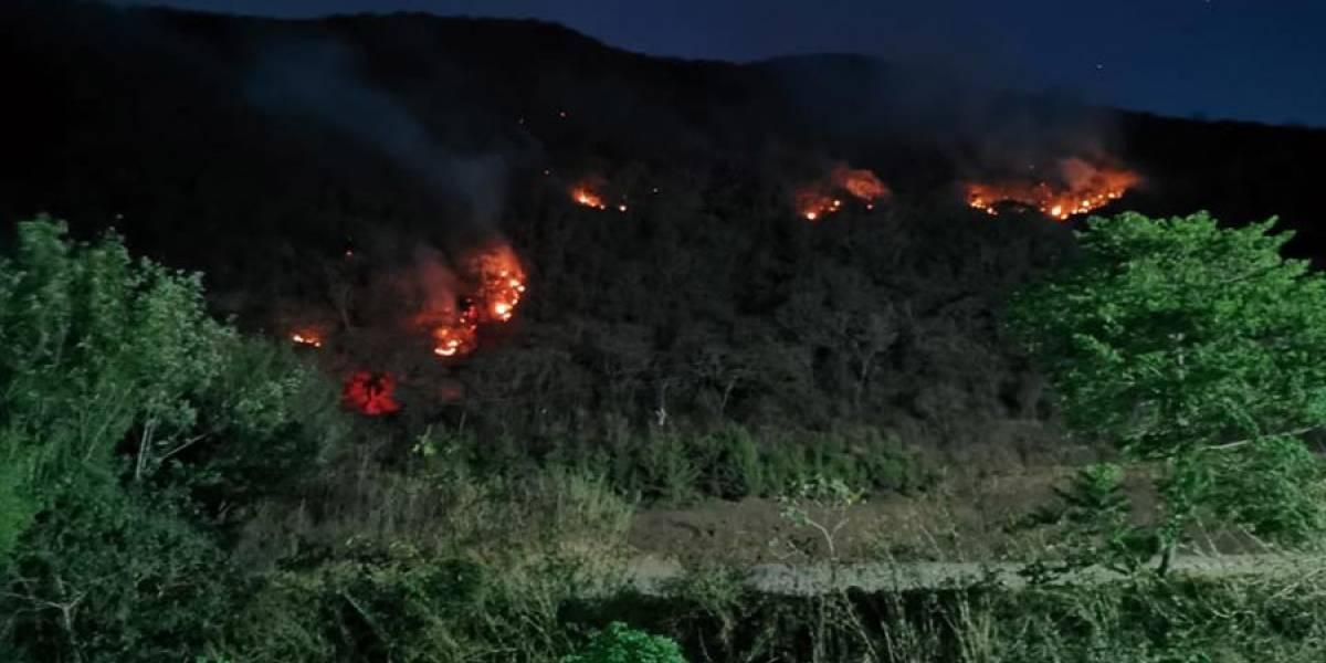 Incendio forestal en San Juan Gascón no cesa