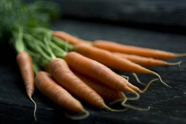 Jugo de zanahoria y avena para adelgazar