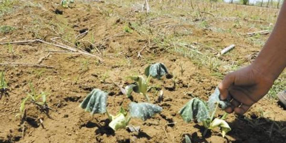 Llaman a la ciudadanía a que también ponga manos a la obra con la sequía