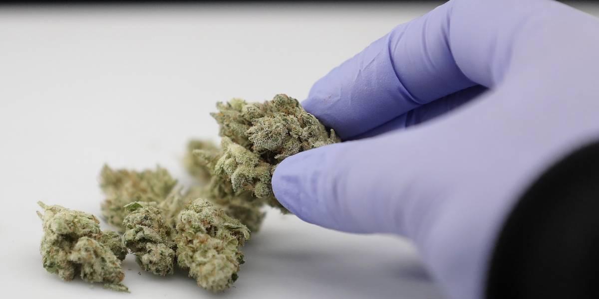 Aumentan ingresos a urgencias por uso de marihuana en Colorado