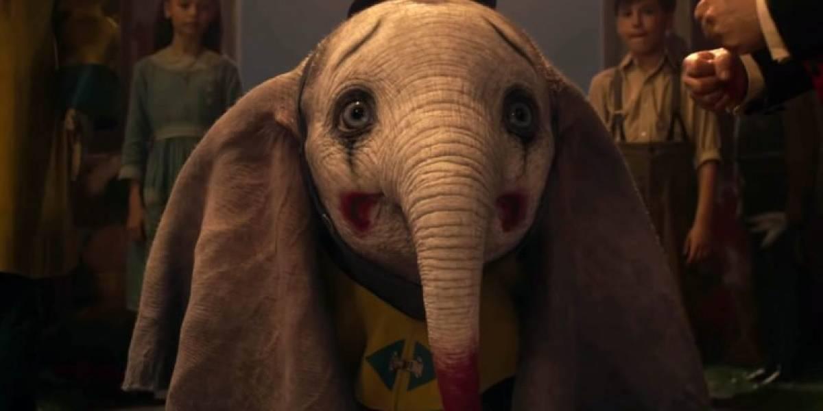 La historia es infinitamente más trágica que la película: así fue la dolorosa vida y la misteriosa muerte del verdadero Dumbo