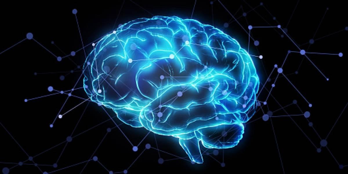 Científicos logran mejora en memoria de trabajo de adultos mayores