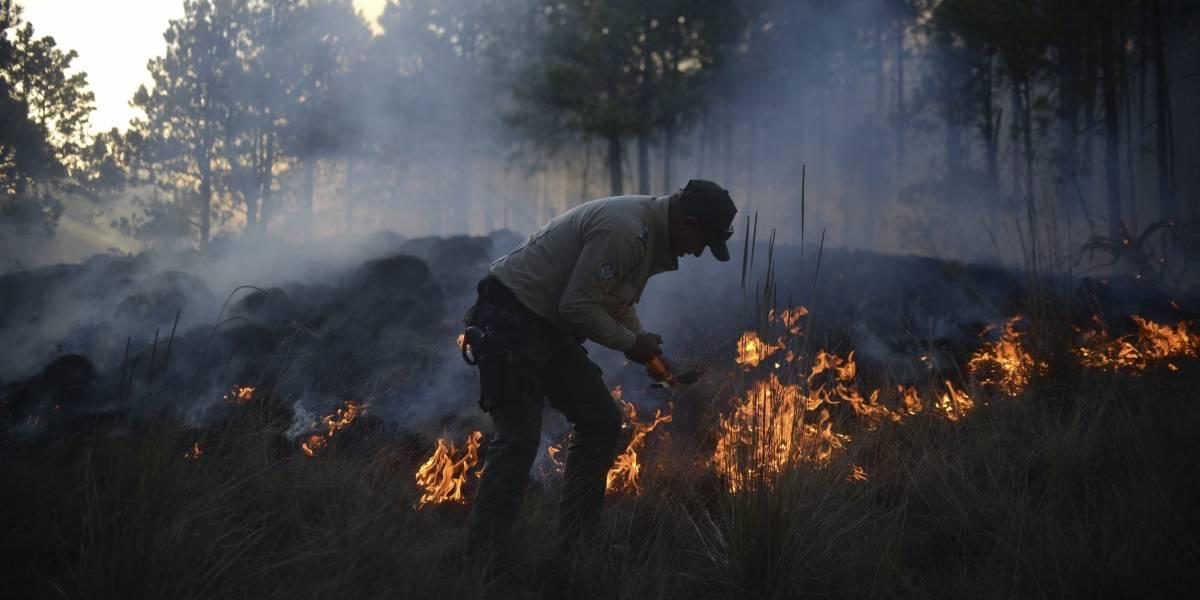 Semar activa Plan Marina ante incendios forestales en el país