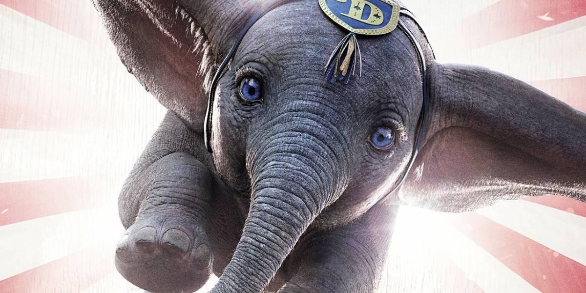 Esta es la trágica historia que inspiró la película Dumbo