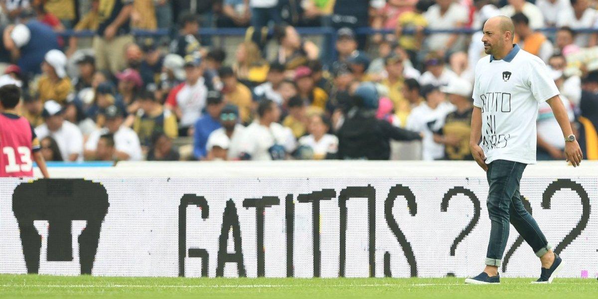 """Reaparece el """"gatito ni ma…"""" en el Estadio Olímpico"""
