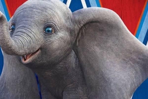 """Asociación Circos Reunidos rechaza la película """"Dumbo"""""""