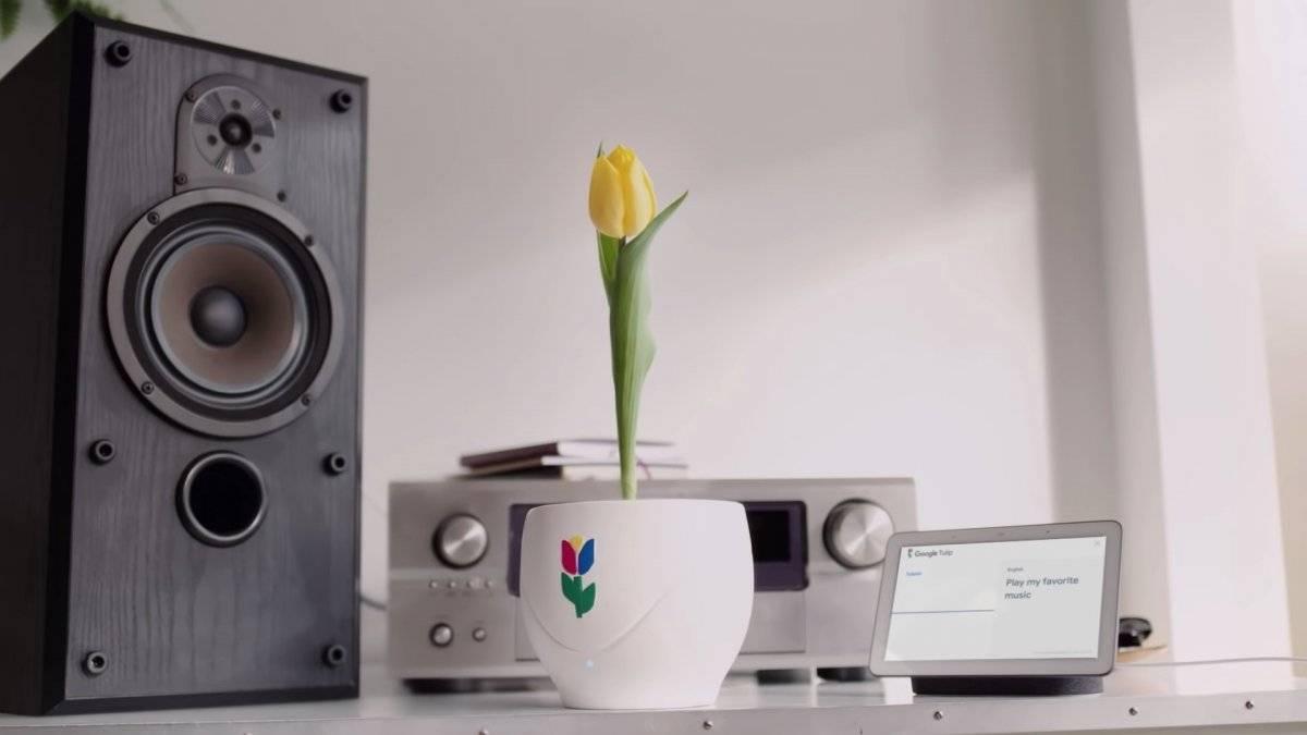 Google Tulip 1º de abril