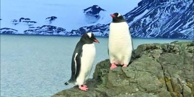 Estação brasileira de pesquisas na Antártida
