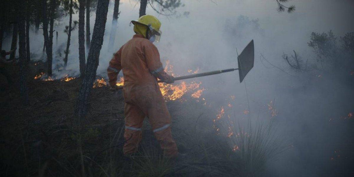 'El Bronco' pide no 'caguamear' para evitar incendios forestales
