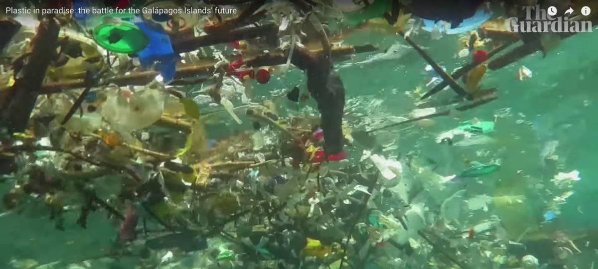 Contaminación en Galápagos