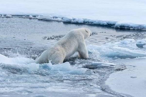 Cambio climático: Este país se está calentando dos veces más que el resto del mundo