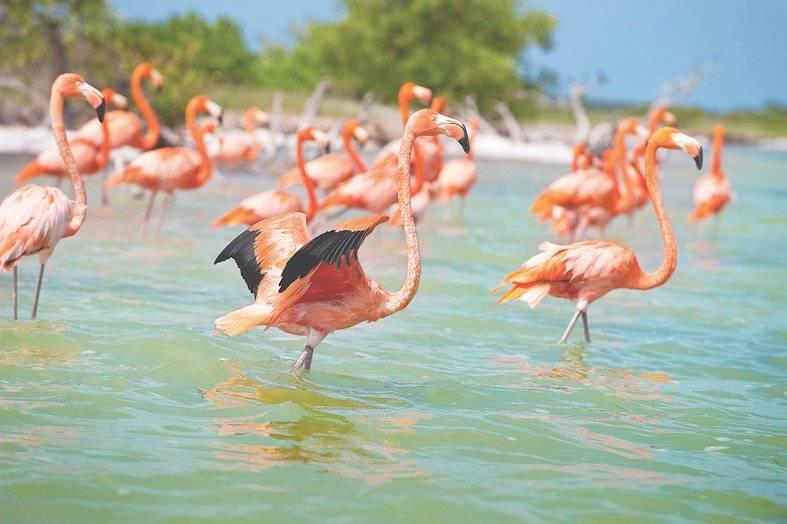 Turismo en Yucatán