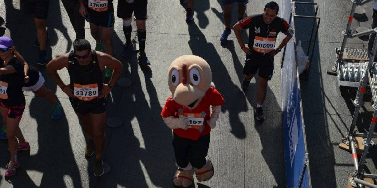 """El """"pajarraco"""" más longevo del mundo se la jugó corriendo en la Maratón de Santiago"""
