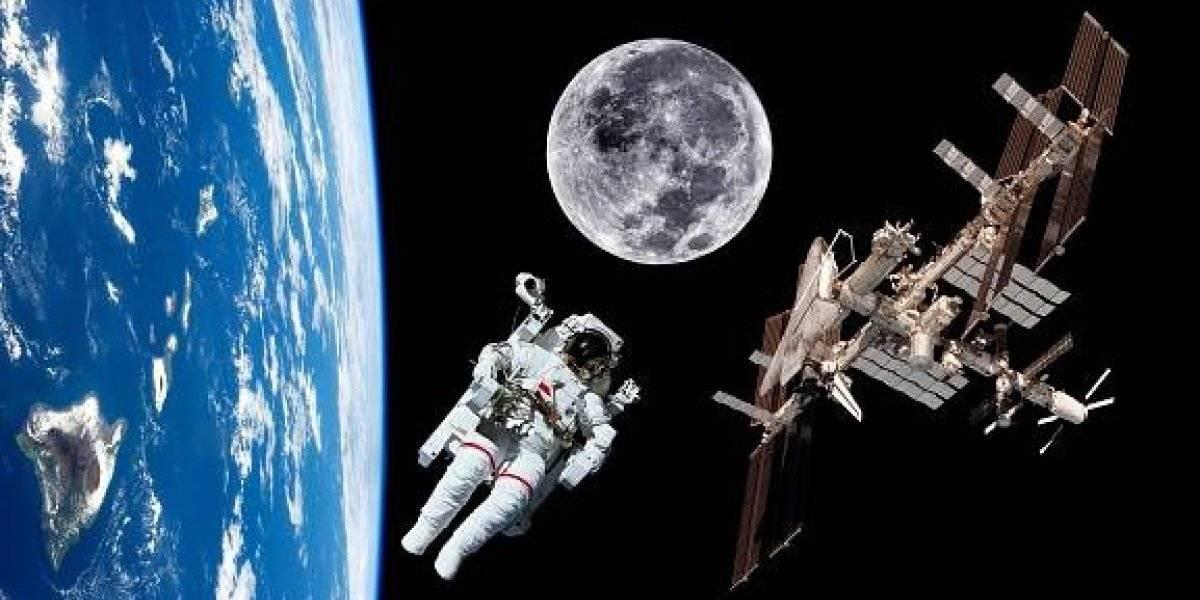 Y no son extraterrestres: los visitantes indeseados en la Estación Espacial Internacional que ponen en riesgo mortal a los astronautas