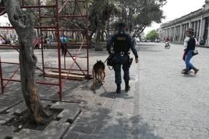 operativo contra el narcomenudeo en centro histórico