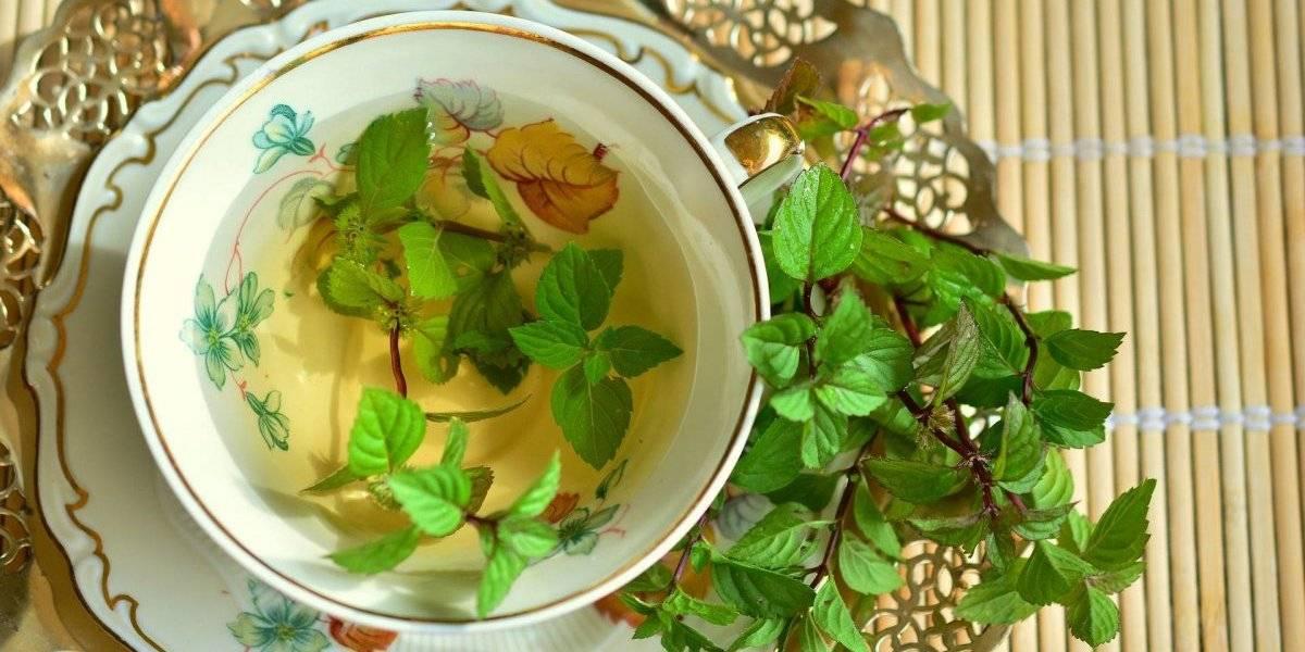 Chá de menta: bebida pode ajudar a emagrecer e a controlar a fome