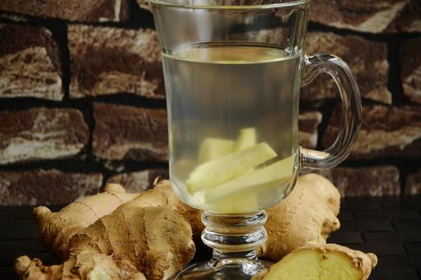 Bebidas para adelgazar con sabila beneficios