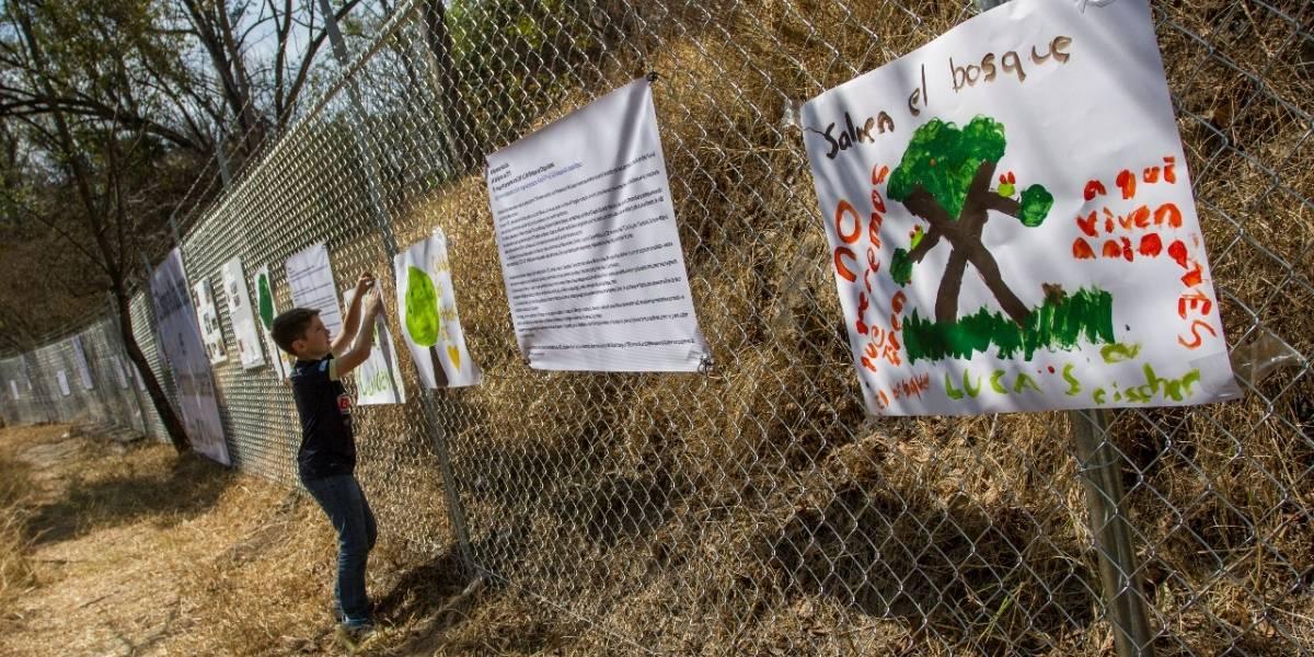 Predio de Bosque de Chapultepec tiene 'candado' para evitar urbanización